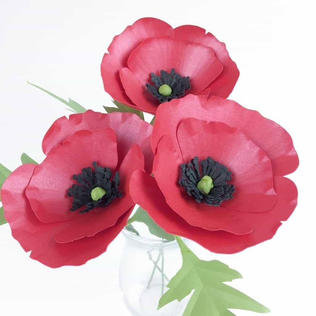 poppy paper flower template