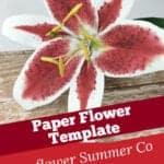 stargazer lily paper flower template