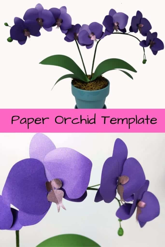 Learn how to make this paper orchid. It is really easy and looks amazing! Paper flower templates | Paper flower patterns | 3d paper flowers | svg flowers | small paper flowers | paper crafts | silhouette crafts | cricut projects |