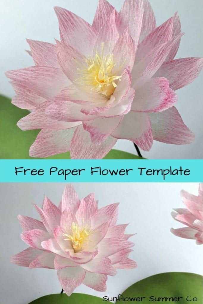 Try making the crepe paper lotus. You can get the free template at my website. | Paper flower template | paper craft | how to make paper flowers | easy paper flowers | paper flower tutorial | wedding paper flowers | crepe paper flowers
