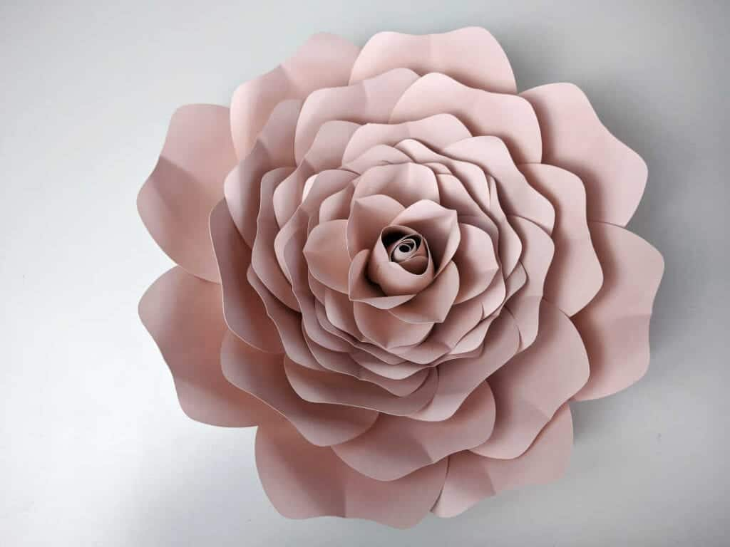 free giant paper rose template with printable